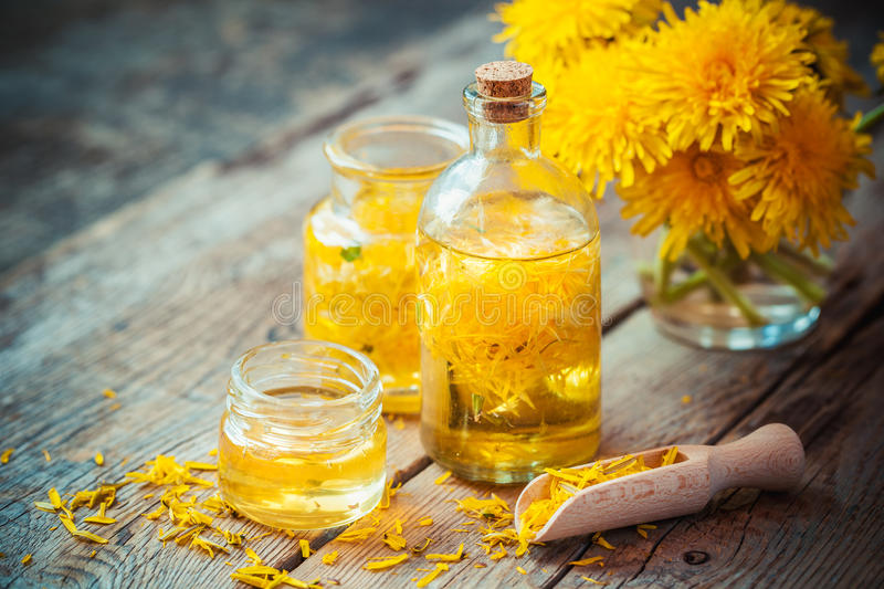 Bottles of dandelion tincture or oil and flower bunch royalty free stock photo