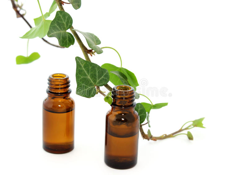 Bottles of essential oil and branch of ivy isolated stock photography