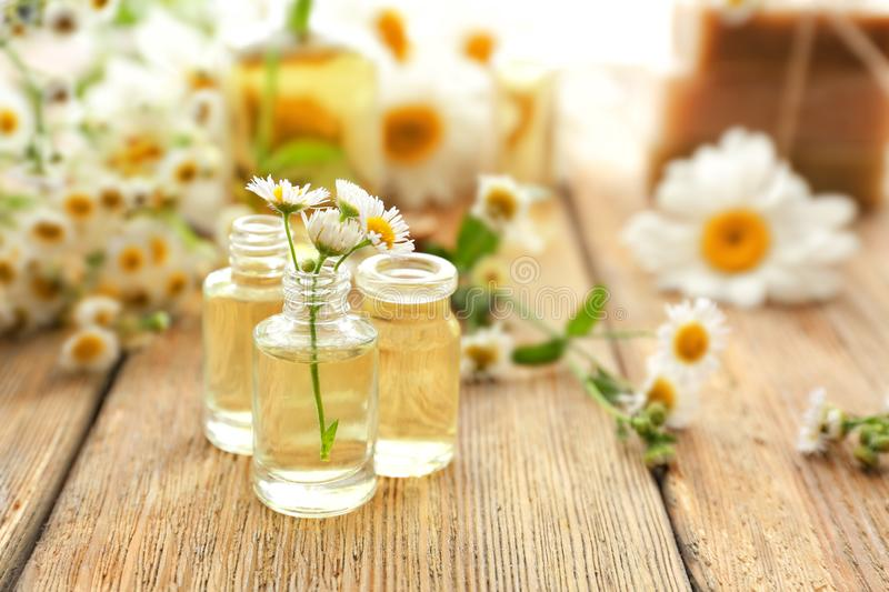 Bottles with essential oil and chamomile flowers on wooden table stock image
