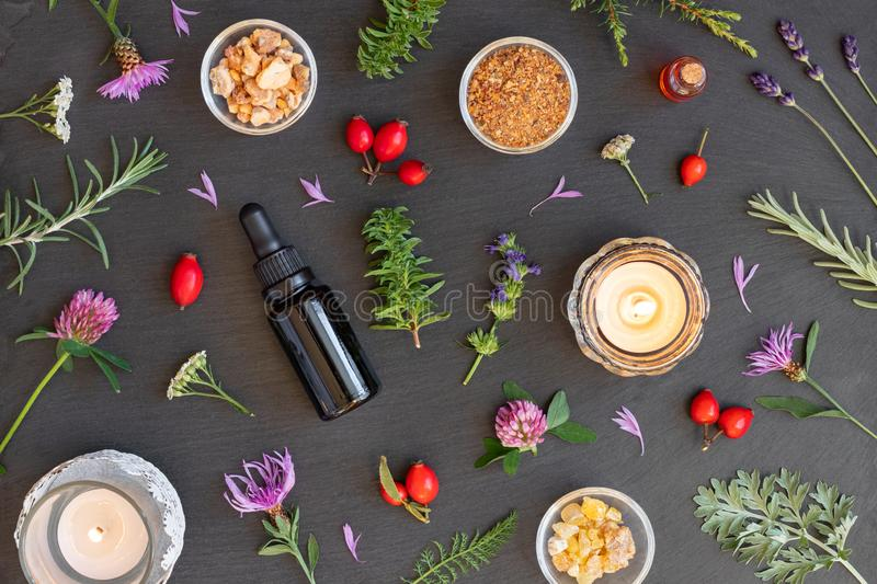 Bottles of essential oil with frankincense, hyssop, myrrh, rosemary, wormwood stock image