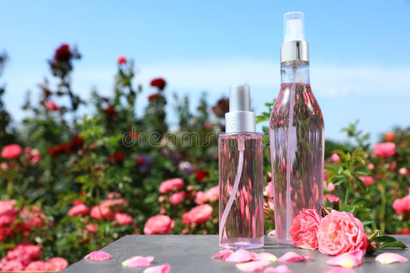 Bottles of facial toner with essential oil and fresh roses on table against blurred background. stock photo