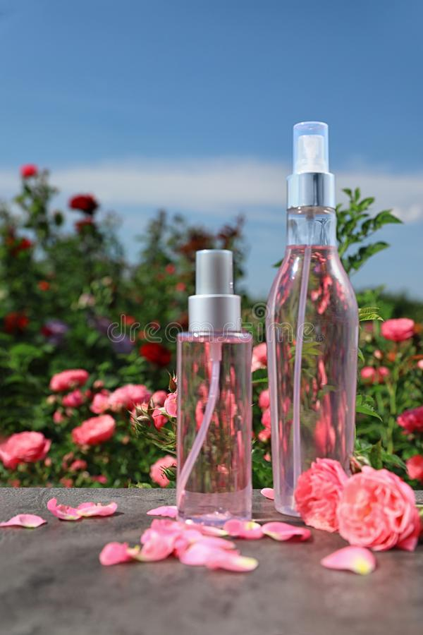 Bottles of facial toner with essential oil and fresh roses on table stock image