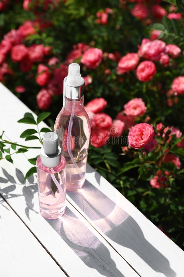 Bottles of facial toner with  oil on table near rose bushes. Space for text stock photography