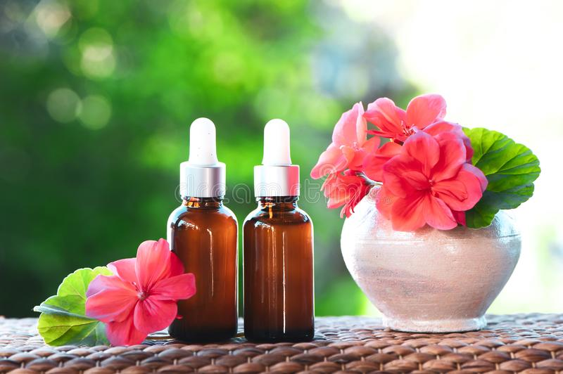 Bottles with geranium oil, fresh flower and leaves on a natural. Green background, bio, organic , nature cosmetics concept stock images