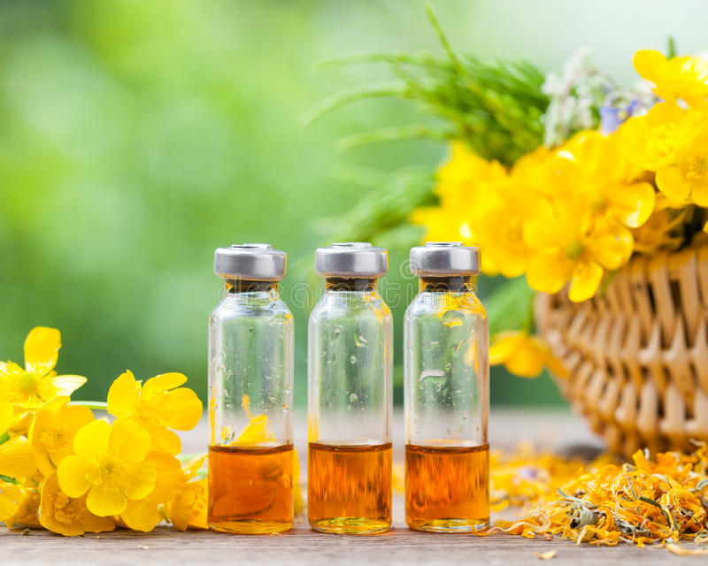 Bottles of healing plants treatment and healthy herbs. In basket stock images