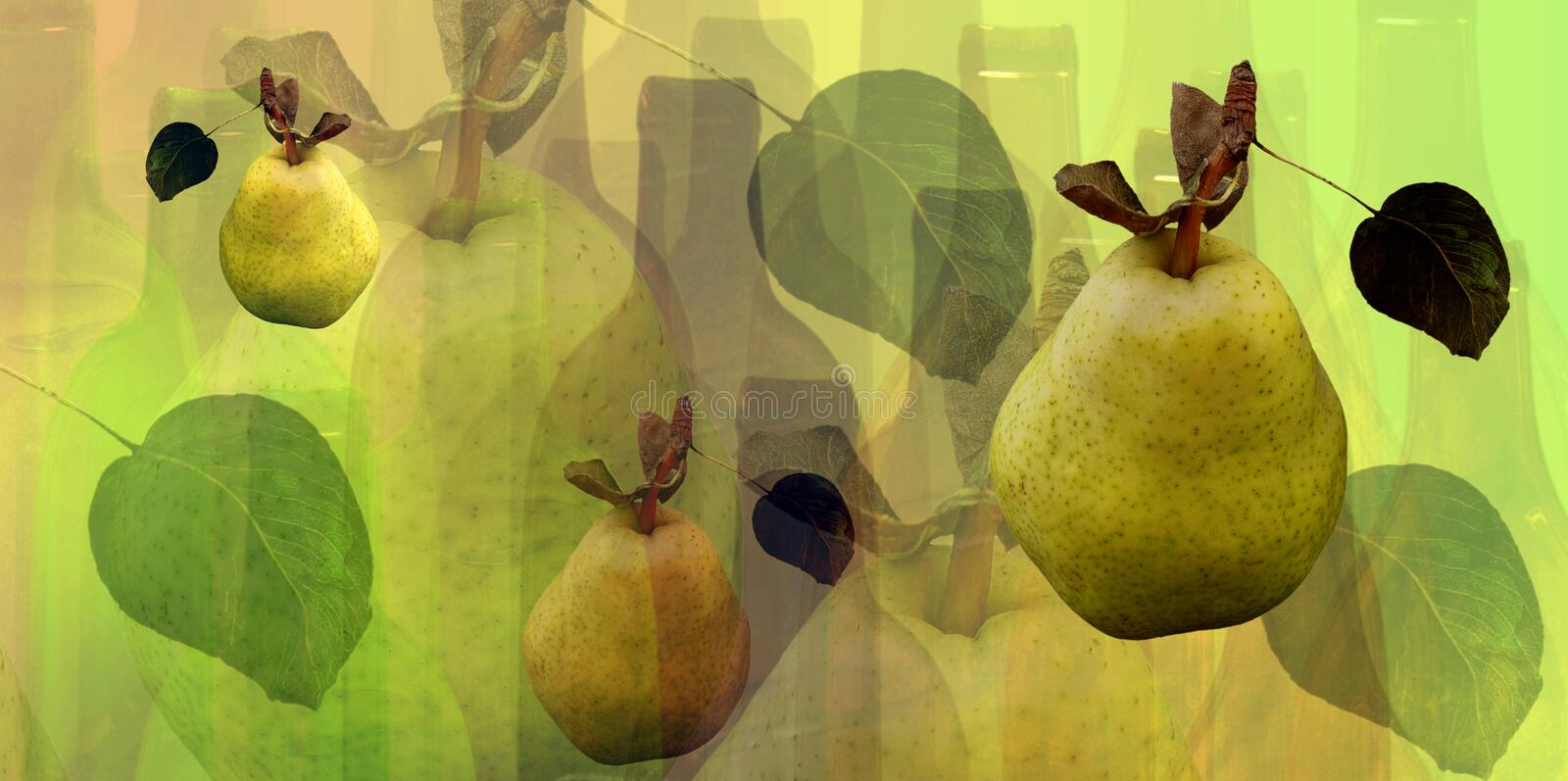 Bottles and pears pattern royalty free illustration