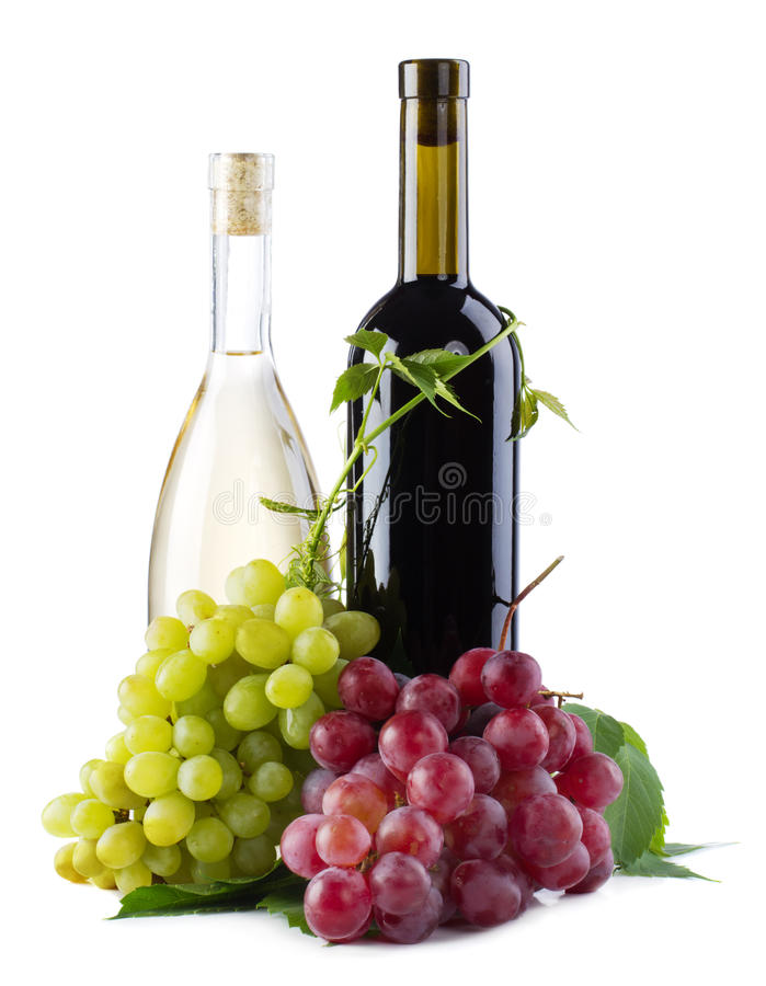 Bottles of red and white wine with grapes. White background stock image