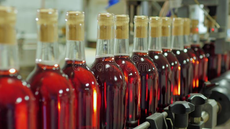 Bottles of red alcohol are moving on conveyor belt royalty free stock photography