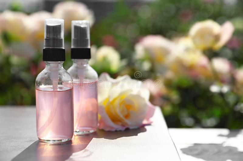 Bottles of toner with essential oil and fresh rose on table in blooming garden stock photo