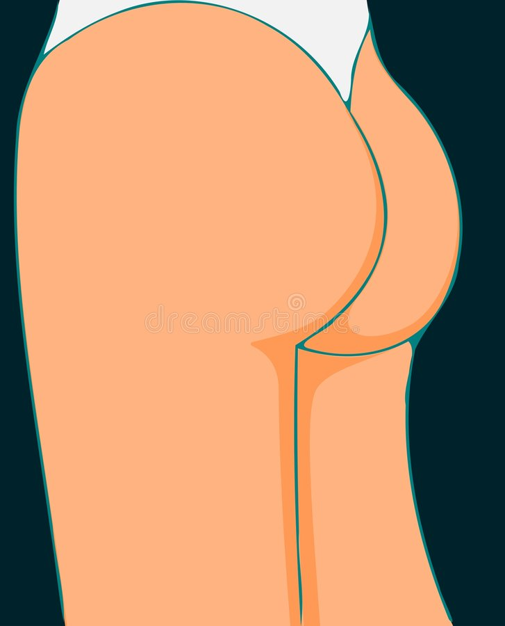 Download Bottom stock vector. Image of juicy, lingerie, davidundderriese - 7857369