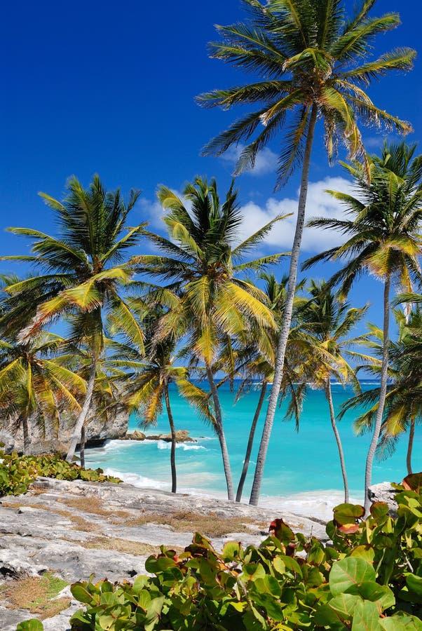Bottom Bay, Barbados Royalty Free Stock Image