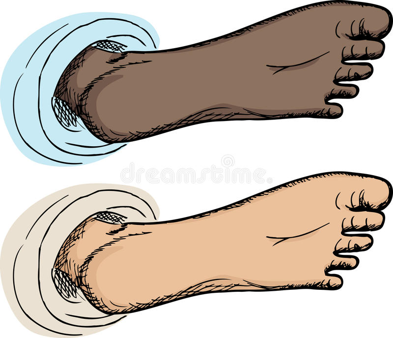 Download Bottom of Foot stock vector. Image of toes, skin, barefoot - 24244845