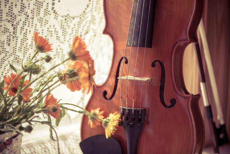 Bottom hHorizontal image of a violin and flowers close up on windows background.. Vintage toned photo. Horizontal image of a violin and flowers close up on royalty free stock images