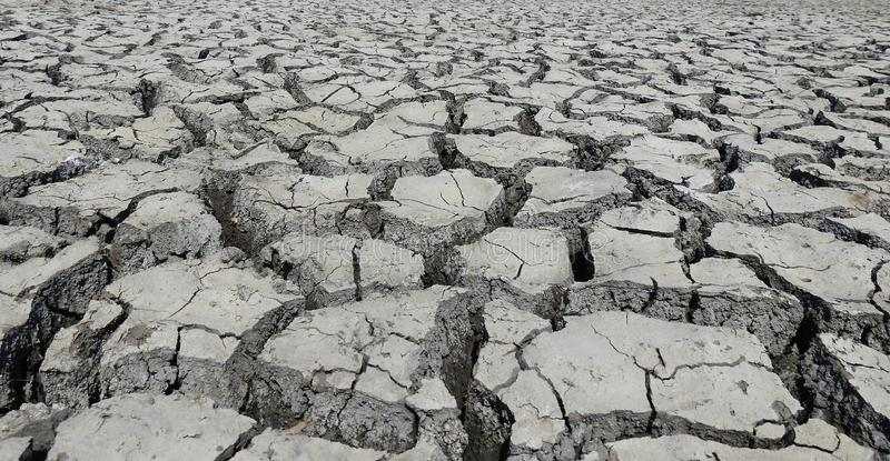 Sever drought. The bottom of a lake in Romania, now very dry because of sever drought royalty free stock photography