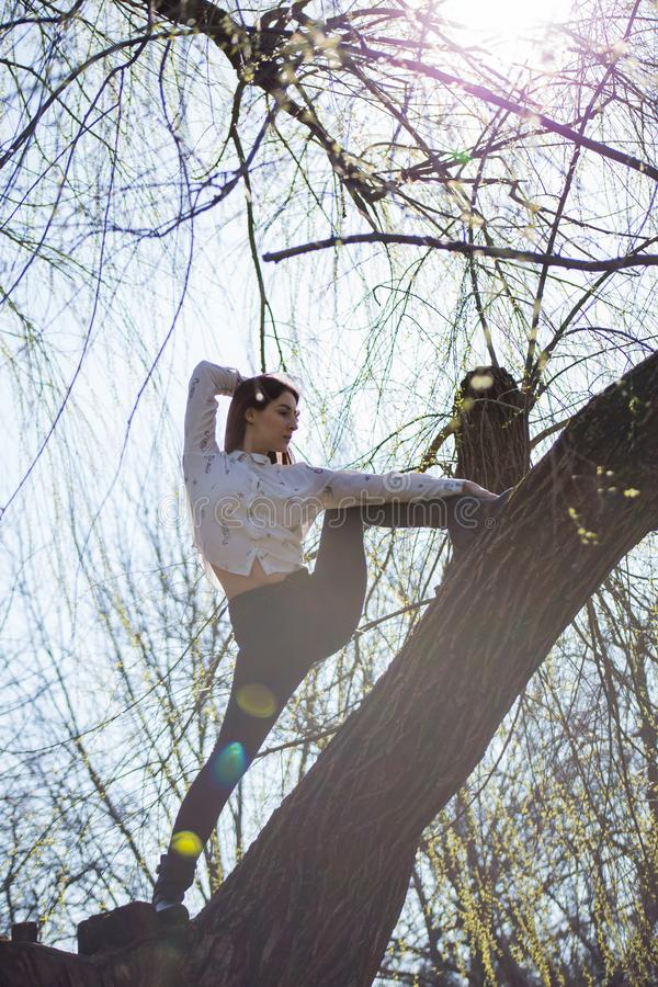 Bottom view charming cute slim girl gymnast is on top of unusual tree without leaves and executes elements of stretching stock photos
