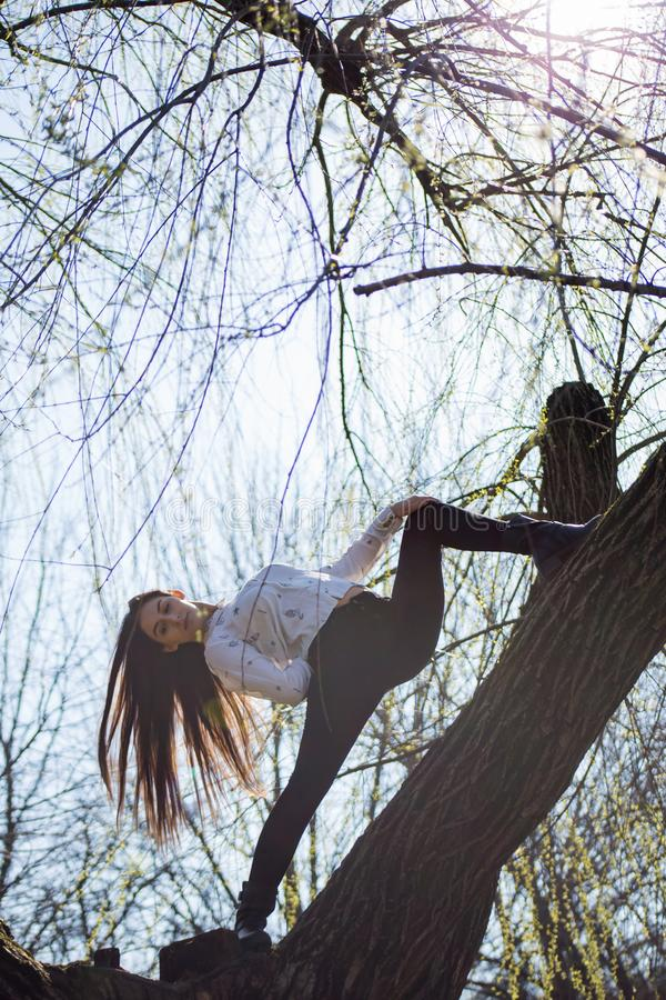 Bottom view charming cute slim girl gymnast is on top of unusual tree without leaves and executes elements of stretching stock photography
