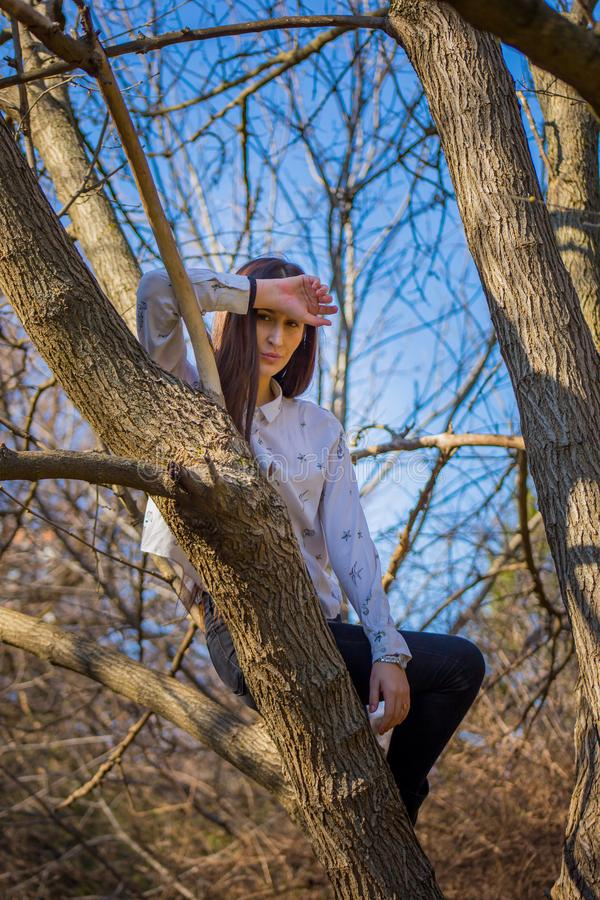 Bottom view charming cute slim girl is on top of unusual tree without leaves on background sky stock photography