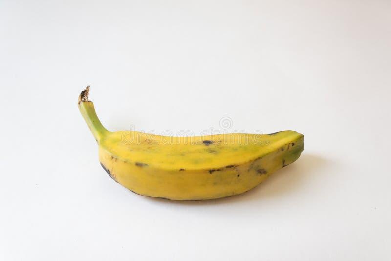 Bottom view of a fully ripe Burro banana, Orinoco, Bluggoe, Horse, Hog and Largo banana, isolated on white, horizontal aspect stock photos