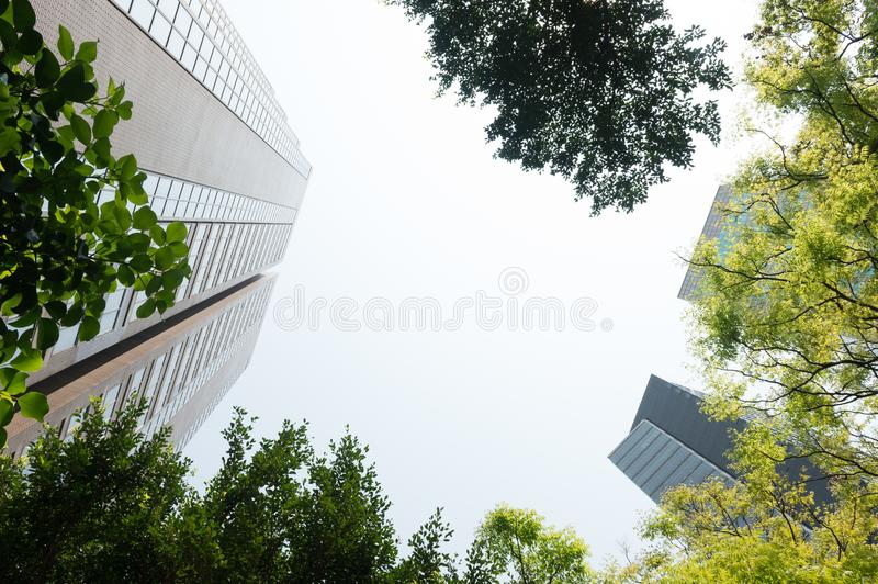 Fresh green and building groups royalty free stock photography