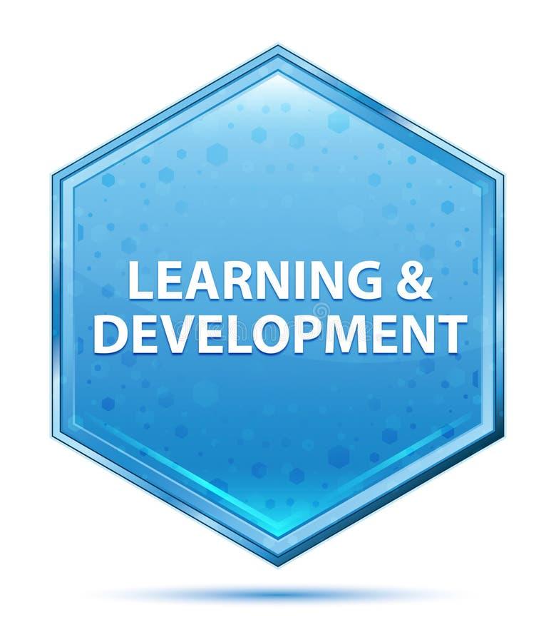 Bottone blu di cristallo di esagono di sviluppo & di apprendimento illustrazione di stock