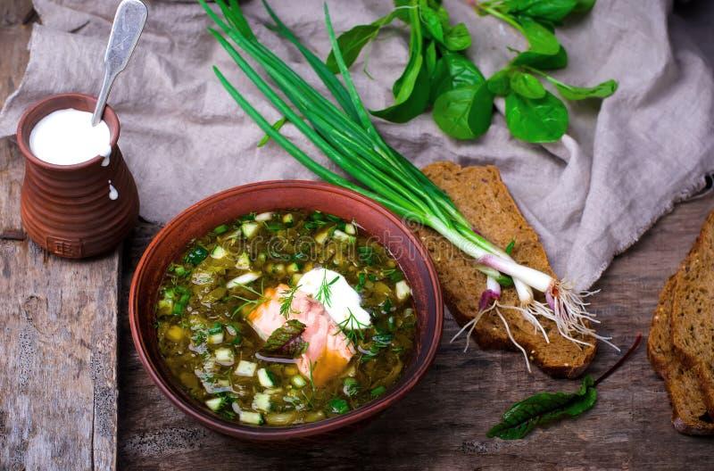 Botvinia, sopa tradicional do frio do russo imagens de stock