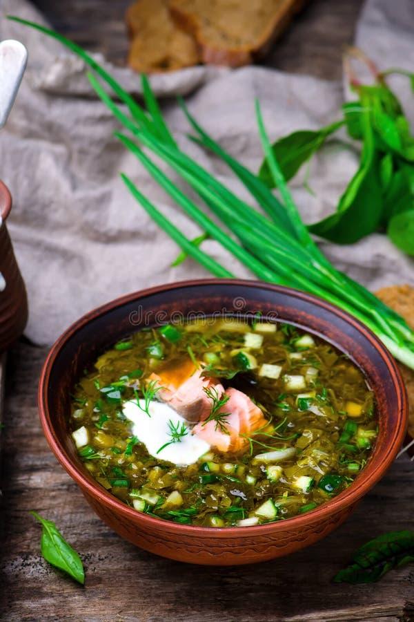Botvinia, traditionelle russische kalte Suppe lizenzfreie stockfotos