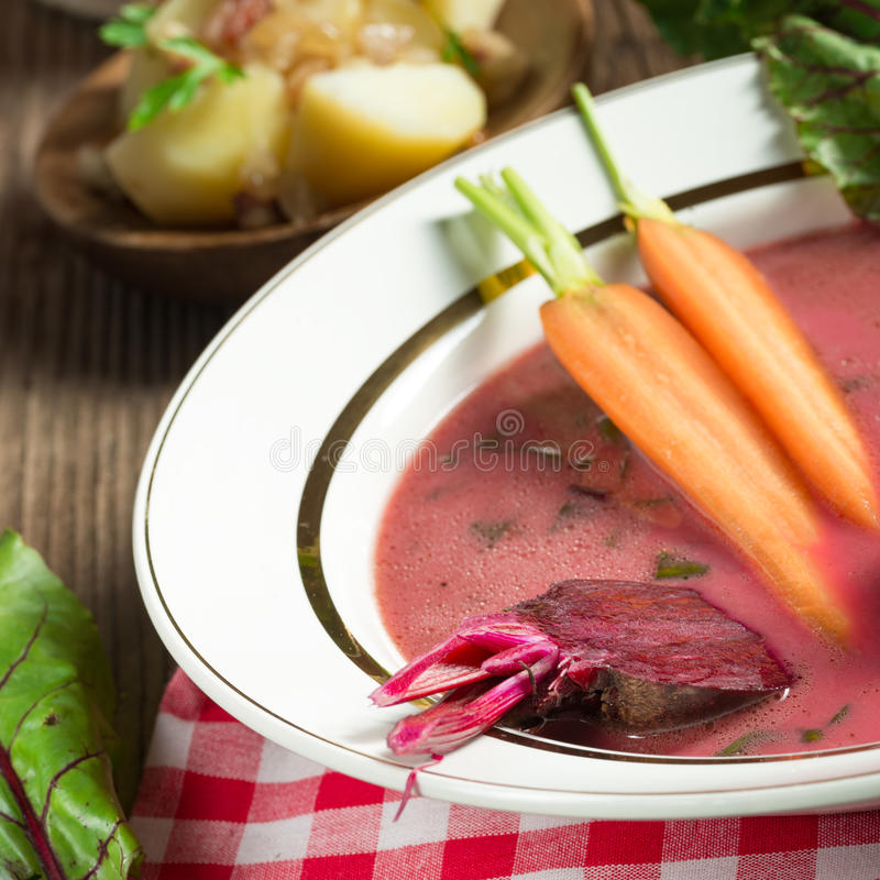 Botwinka - soppa av unga betasidor arkivfoton
