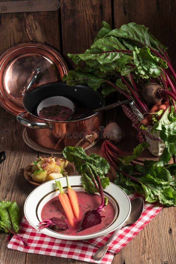 Botwinka - soppa av unga betasidor arkivfoto