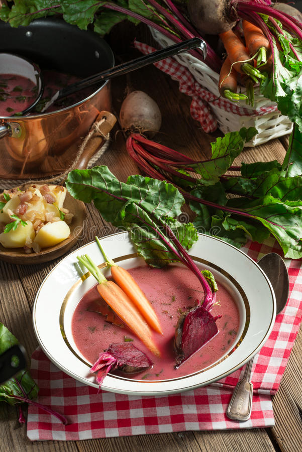 Botwinka - Soup of young beet leaves stock image