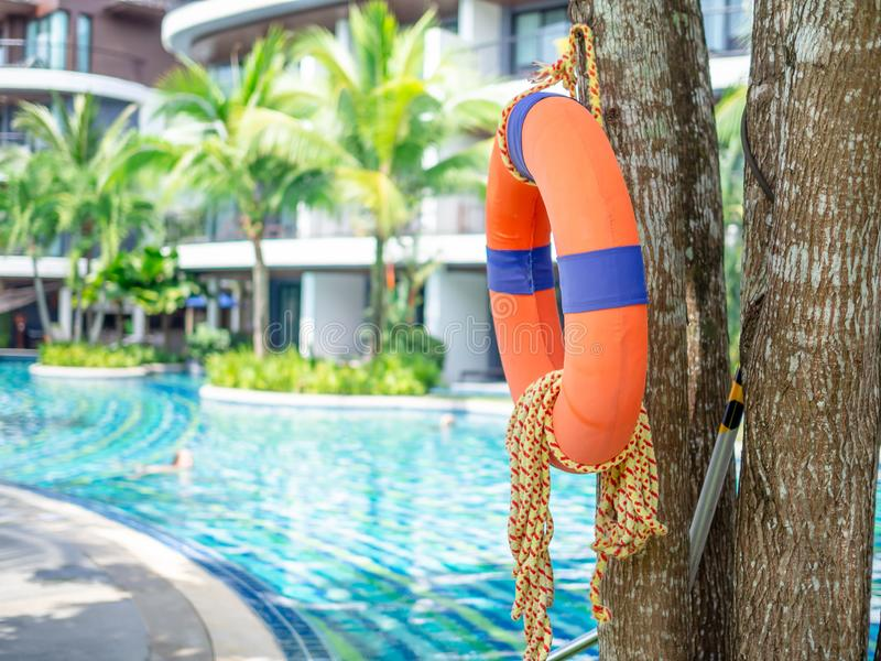 Bouée de sauvetage avec la corde accrochant sur l'arbre près de la piscine et de la construction image libre de droits
