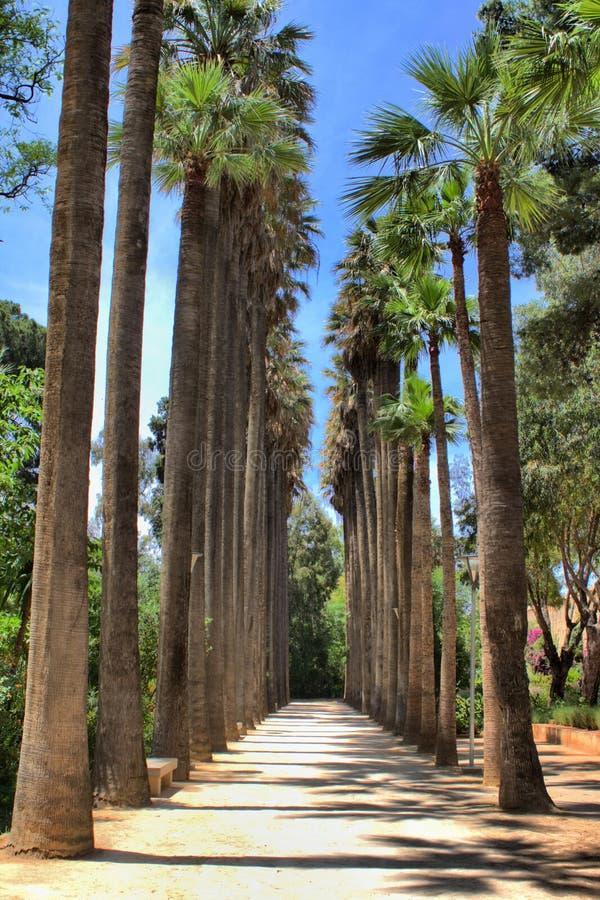 Bou Jeloud Gardens in Fes, Marokko stockfoto
