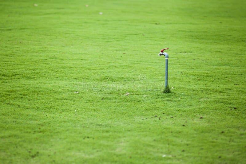 Bouche d'incendie en parc avec l'herbe verte photographie stock libre de droits