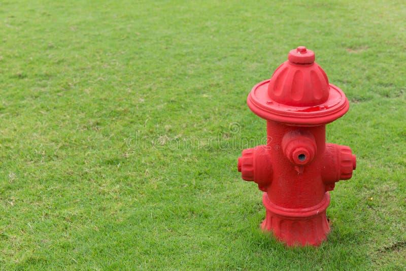 Bouche d'incendie rouge sur le champ d'herbe verte images libres de droits