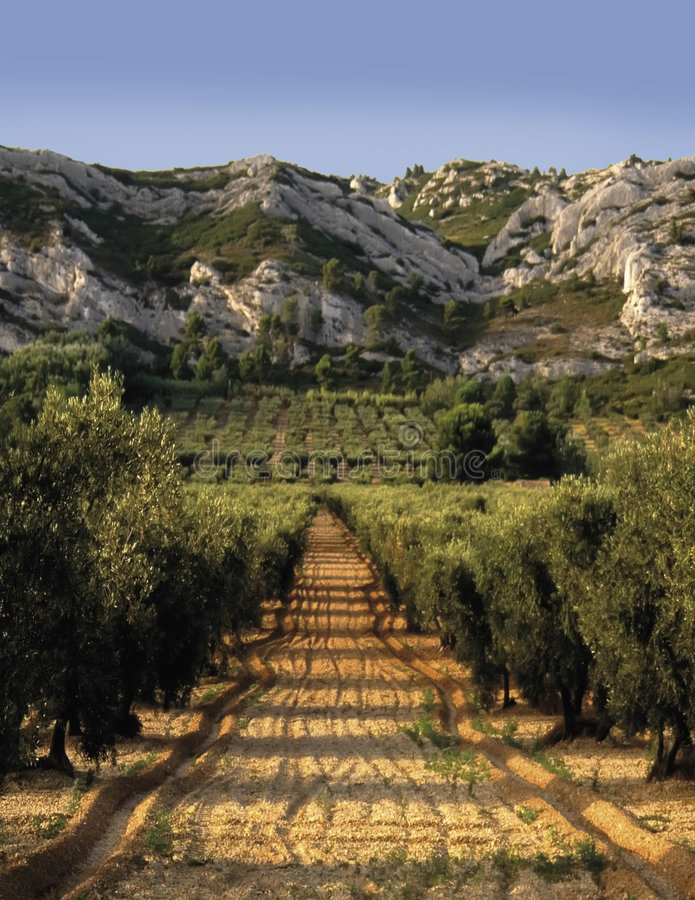 Bouches du rhone provence de France provence o alpi fotos de stock royalty free