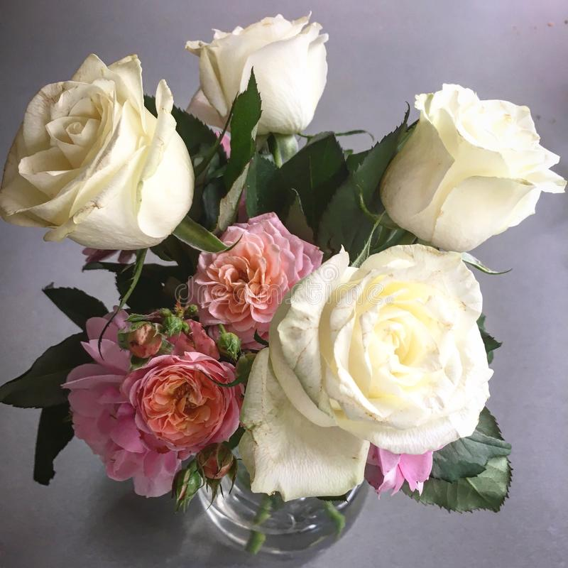 Bouchet. Beautiful bouchet of two colored roses stock photography