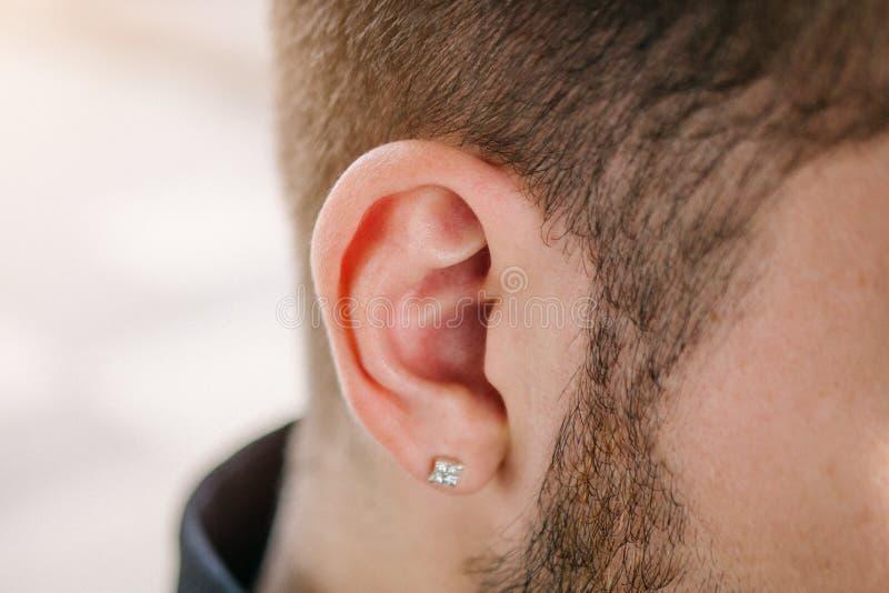 Boucle d'oreille dans l'oreille masculine Partie perçante du corps photo libre de droits