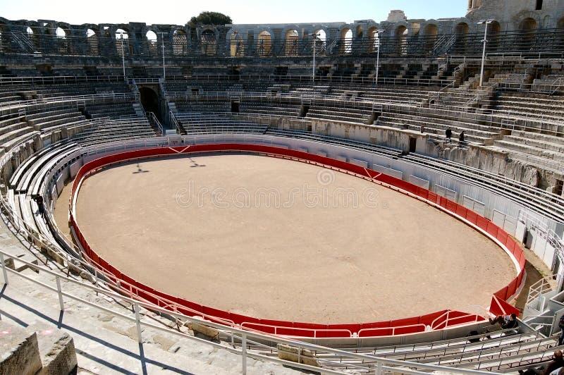 Boucle de Bull dans Colisseum romain image stock
