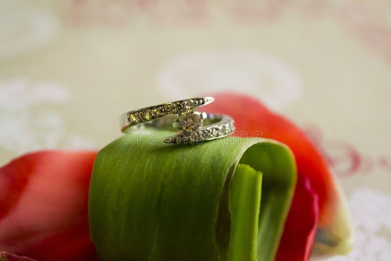 Download Boucle de mariage photo stock. Image du effectué, mariage - 56484652