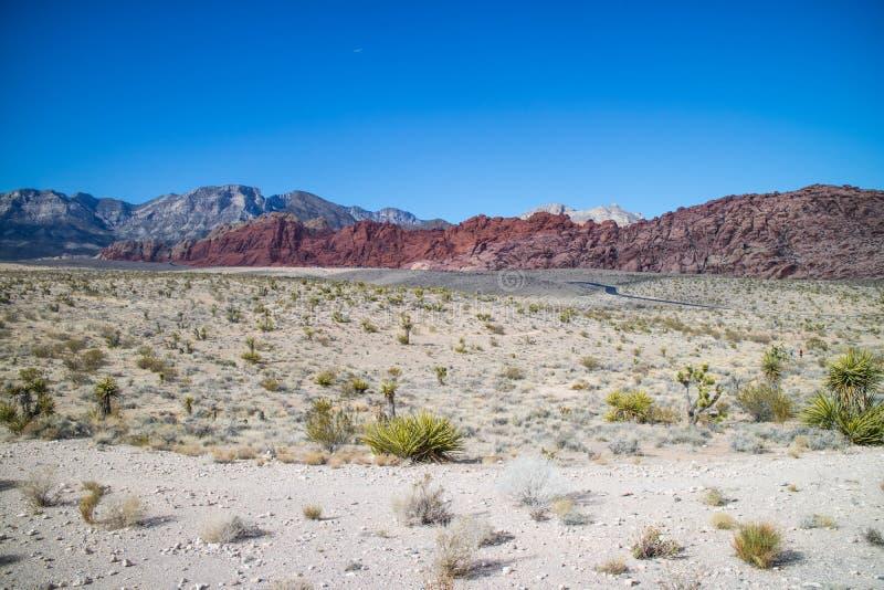 Boucle de Meonkopi dans la région rouge de conservation de canyon de roche, Nevada images libres de droits