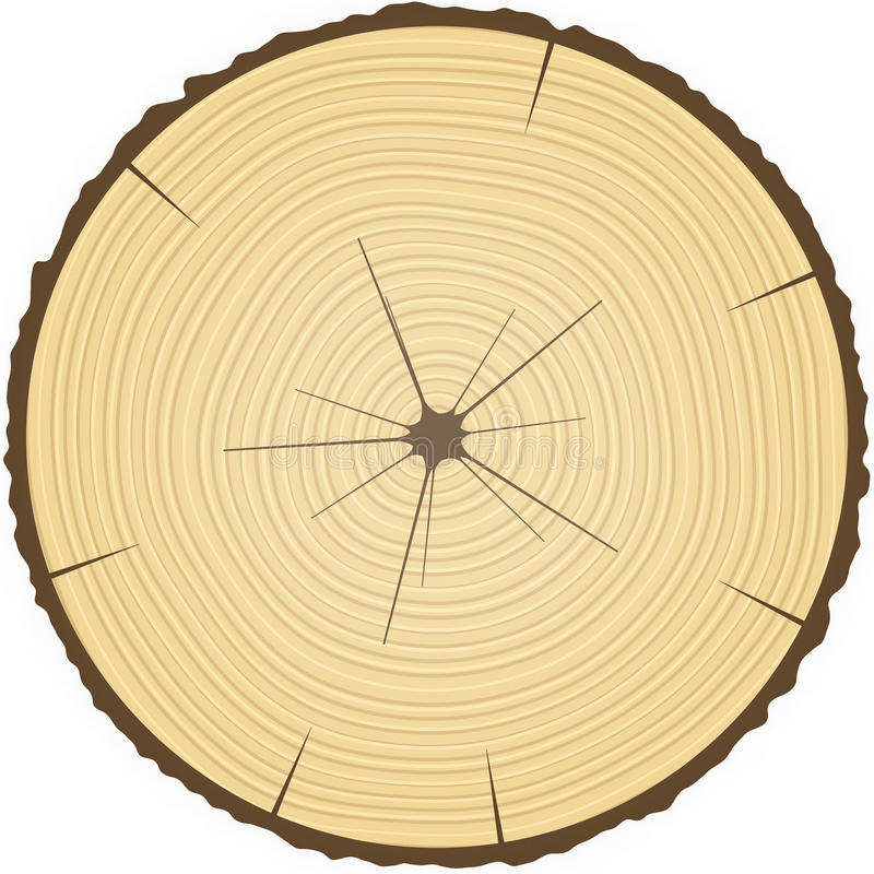 Boucles d'arbre. illustration stock