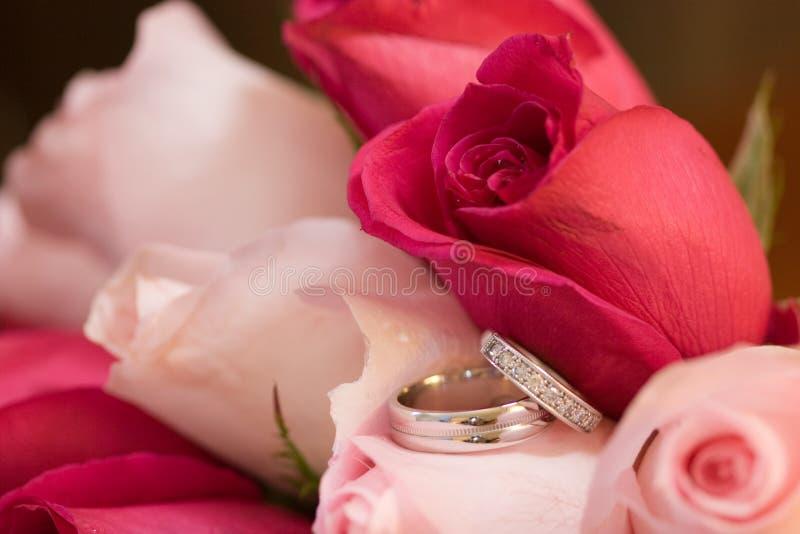 Boucles de mariage dans les roses photos stock