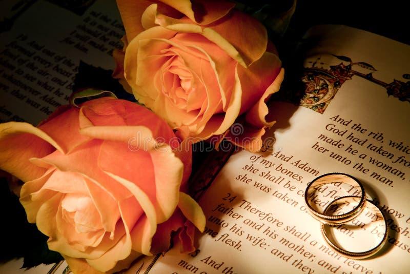 Boucles de mariage sur une bible avec le texte de genèse image libre de droits