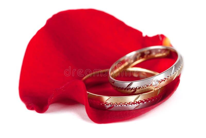 Boucles de mariage sur une rose photographie stock
