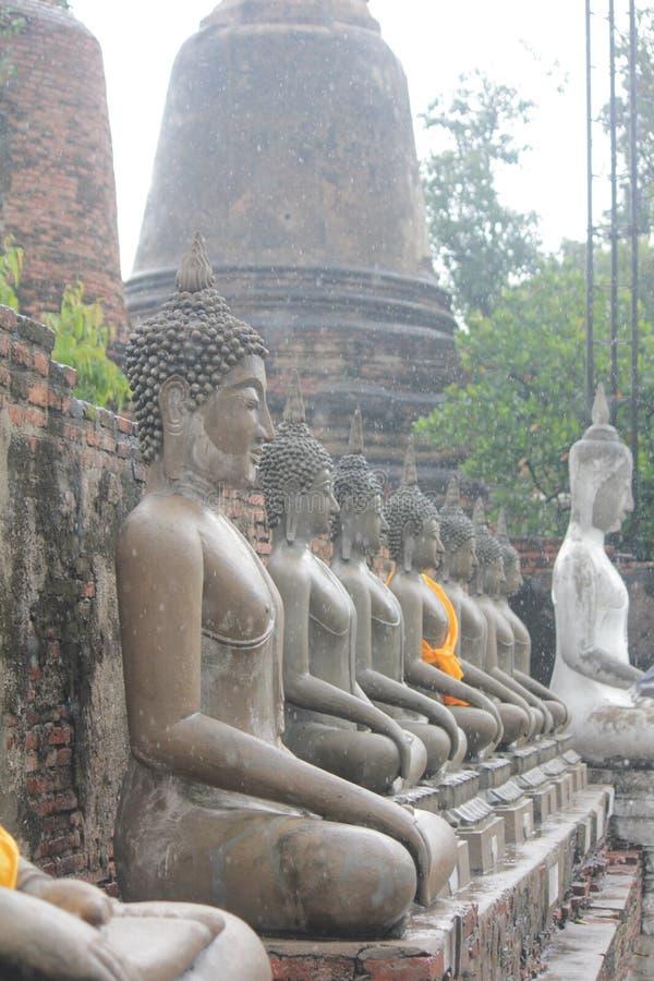 Bouddha ou Buddhahead images stock