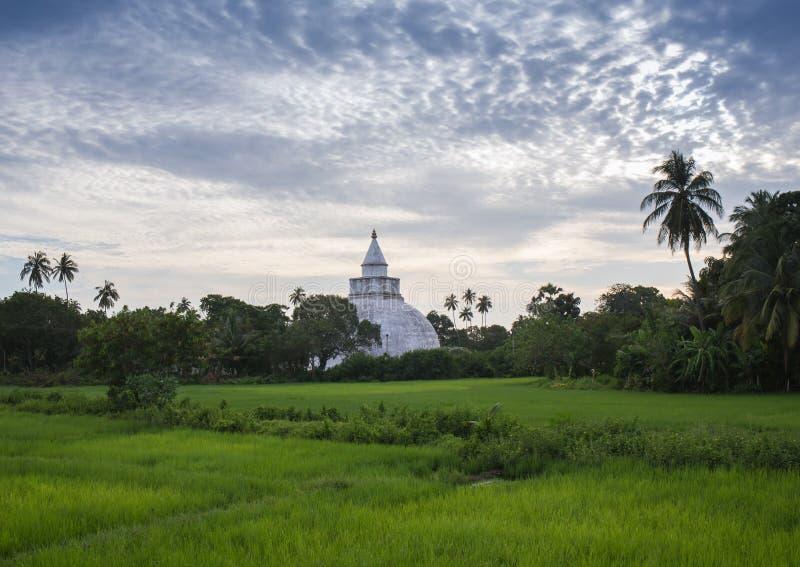 Boudhanath Stupa royalty-vrije stock afbeeldingen