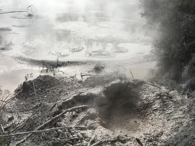 Boue chaude volcanique Rotorua Nouvelle-Zélande image stock