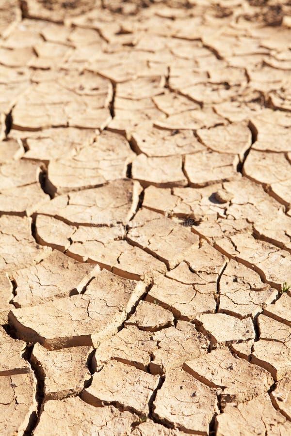 Boue criquée sèche dans sec vers le haut le waterhole photographie stock