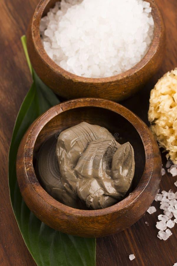 Boue et sel de mer morte image libre de droits