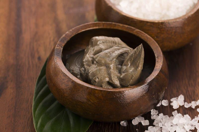 Boue et sel de mer morte photo stock