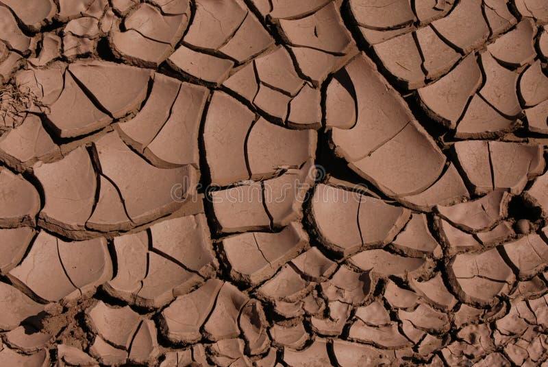 Boue sèche criquée photo libre de droits